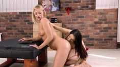 Horny young Olsen and slutty Malone get into a lesbian fuck fest