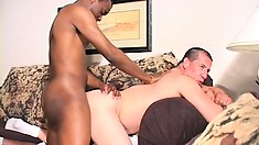 Then his ass gets checked out and he gets the black cock deep in it