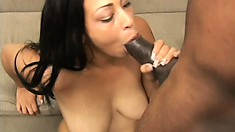 Busty brunette surrenders her peach to a huge black cock and enjoys intense pleasure