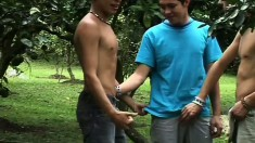 Two huge dicks are ready to anally penetrate a straight dude