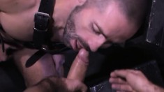 Grizzled stud sucks a cock and gets his ass licked and fisted