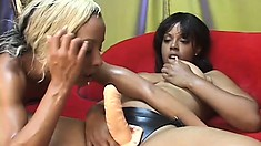 Blonde and brunette black babes lick each other until they cum