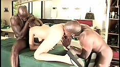 Inviting brunette can't get enough of fucking strange black dudes