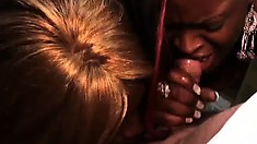 Lucky white dude enjoys the oral services of two black beauties
