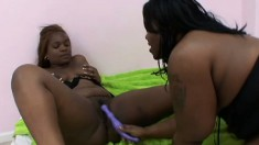 Chubby babes Kelly Reign and Hershey Rae enjoy some pussy grinding