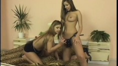 A couple of naughty teen hotties hop on the strap-on for fun