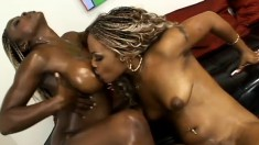 With their bodies all oiled up, two black babes indulge in lesbian sex